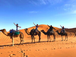 morocco tours ,desert,tour,camel trekking,3days tour from marrakech